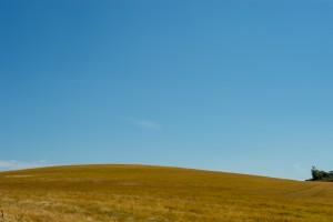 björarps kullar-2