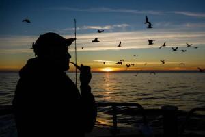 fiskat båt solnedgång-1